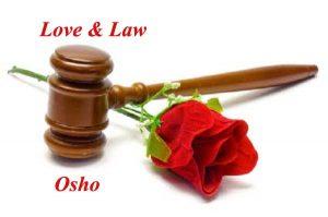 love-law-copy