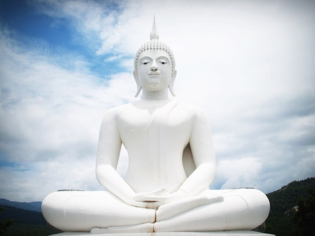Buddhas Path Of Meditation